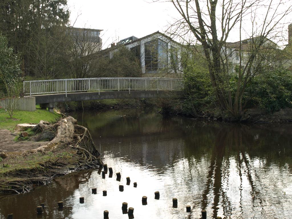 Die Böhme vor der Kurpark Brücke in Bad Fallingbostel